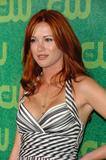 Danneel Harris - CW Network's TCA Press Tour (2006-07-17)