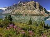 Wallpaperi Th_56160_Bow_Lake_and_Flowers5_Banff_National_Park1_Alberta8_Canada_122_925lo