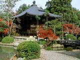 Wallpaperi Th_34541_Seiryoji_Temple3_Kyoto9_Japan_122_943lo